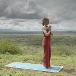 Healing – Safari