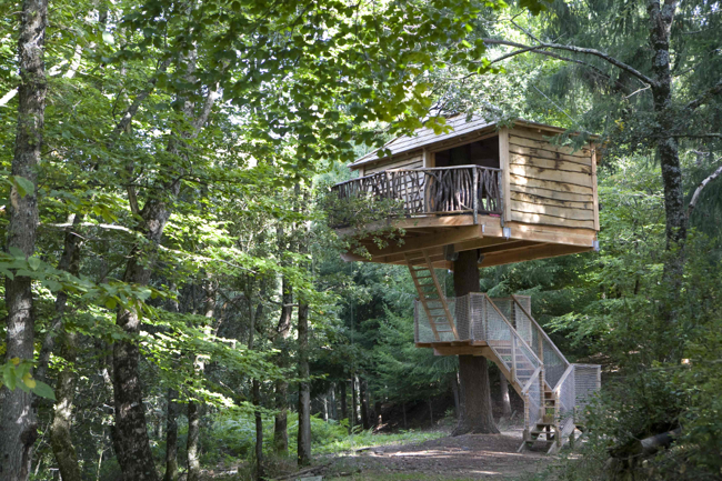 Buy a share in a treehouse