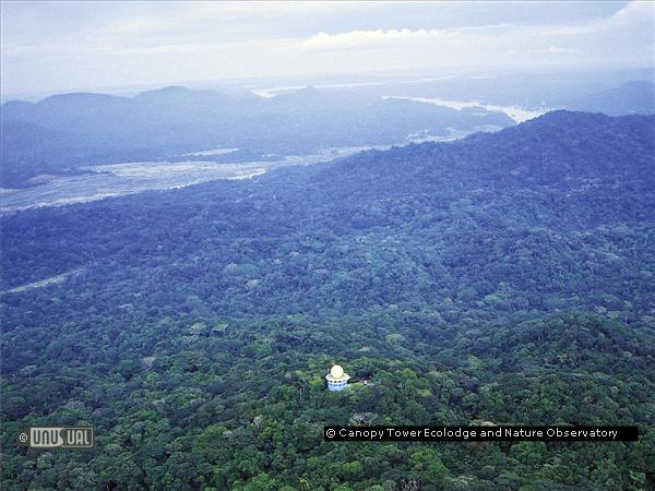 Canopy Tower Ecolodge and Nature Observatory & Canopy Tower Ecolodge and Nature Observatory in Gamboa Panama ...