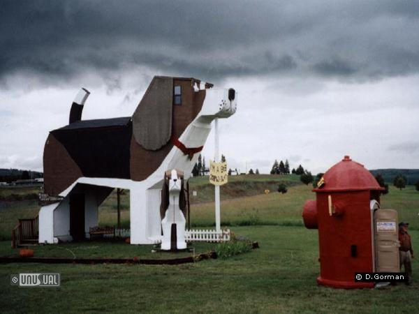 Dog Bark Park Inn in Cottonwood United States of America