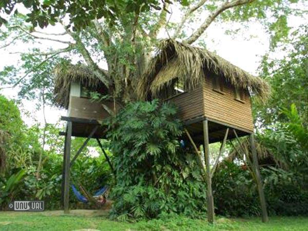 La Selva Homes For Sale