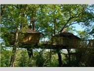 Les Alicourts Resort Treehouses